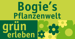 Logo von Bogie´s Pflanzenwelt