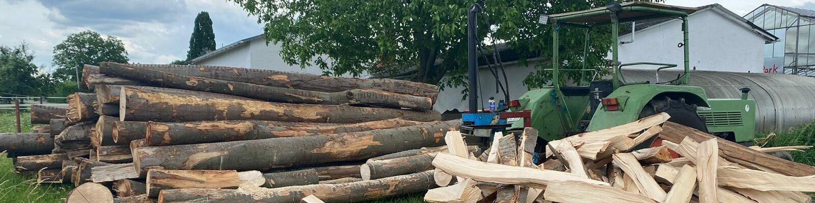 Titelbild von Forstservice | Brennholzverkauf Denny Hopfer