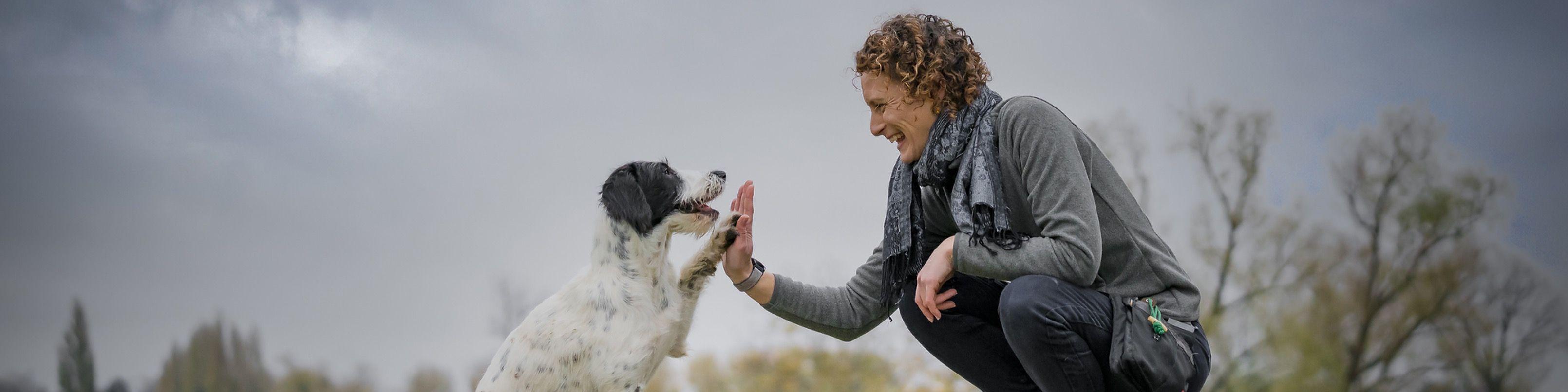 Titelbild von Hundetraining Düsseldorf