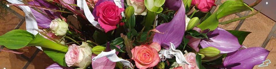 Titelbild von Blütenzauber